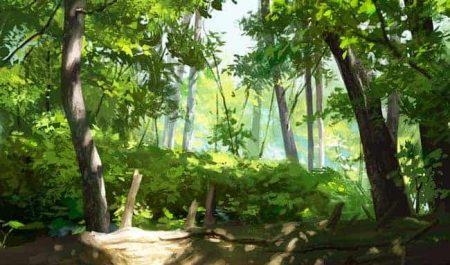 Environments - Foliage